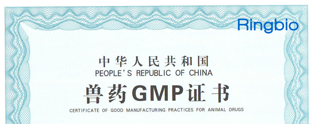 GMP certificate for veterinary diagnostic product of Ringbio is issued