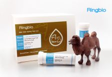 Camel milk fraud test kit - bovine milk from camel milk